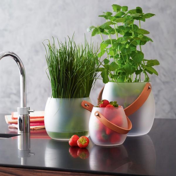 Design with Light Glasschale satiniert